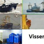 Visserman, de serie