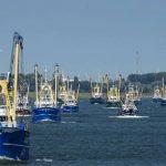 Vissers de dupe van windindustrie op zee